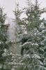 2005-01-23 - Příchovice